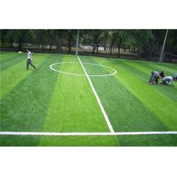 安宁人造草坪公司-宏山体育-安宁人造草坪图片