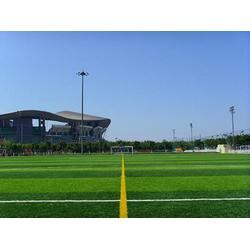 昆明人造草足球场-宏山人造草足球场-人造草足球场施工图片