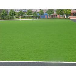 宏山體育 宣威人造草坪施工-宣威人造草坪圖片