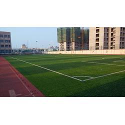 丽江人造草足球场、宏山体育、丽江人造草足球场施工图片