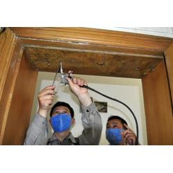 新房白蚁预防-东莞白蚁预防-顾家环保除甲醛公司图片