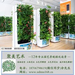 西宁植物墙,家用植物墙,聚美艺术(优质商家)图片