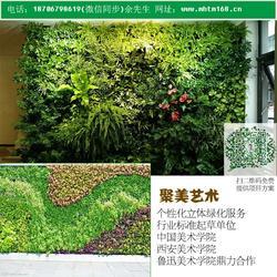 聚美艺术,绿色植物墙,定西植物墙图片