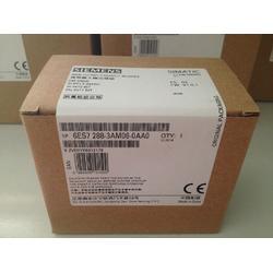 西门子PLC模块代理商6ES72883AM060AA0图片