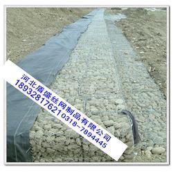 河沿岸综合整治工程区域内 基础设施石笼网格宾网铅丝笼图片