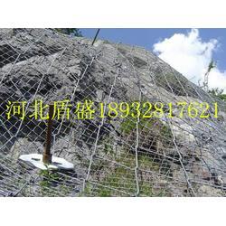 现货供应绞索网主动被动柔性边坡山体防护网拦石网图片