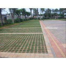 蒙自六角护坡砖_蒙自六角护坡砖厂家直销_泥水水泥制品图片