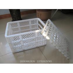 种蛋塑料箱 鸡蛋筐生产厂家 塑料隔板鸭蛋筐图片