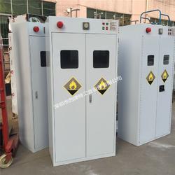 气体柜-甲烷气瓶柜-有毒气体存储柜图片