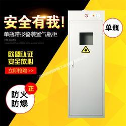 气瓶安全柜/气体存储柜图片