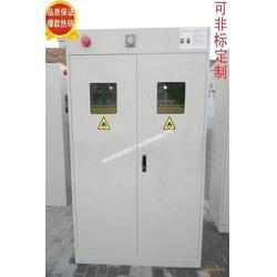 工业气体存储柜-智能防爆报警气瓶柜图片