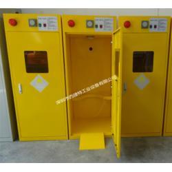 乙炔、煤气气瓶柜-危险气体存储柜图片