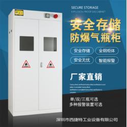 甲烷气瓶柜-气体储存柜图片