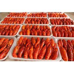 柳伍水产龙虾苗供应商、购买小龙虾苗、卢龙虾苗图片