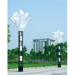 景观灯、贵州景观灯报价、龙凤照明(优质商家)图片