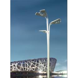 景观灯-贵州景观灯供应-龙凤照明(优质商家)图片