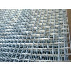 密纹网片参数|渤洋丝网|广西密纹网片图片