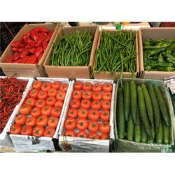 嘉宝食材(图)|配送蔬菜公司|天河区配送蔬菜图片