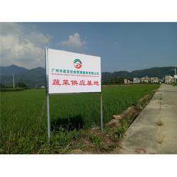 广州蔬菜配送-嘉宝饮食(在线咨询)蔬菜配送图片