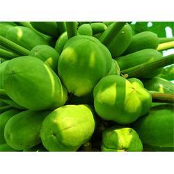 南站蔬菜水果配送-嘉宝农业-蔬菜水果配送图片