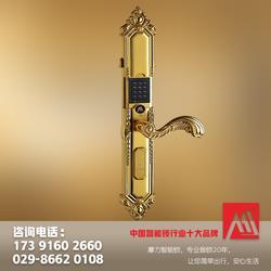 西安指纹锁,西安指纹锁哪家好,顾家智能(优质商家)图片