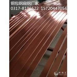 惠丰铜包钢圆线优惠 质量上乘图片