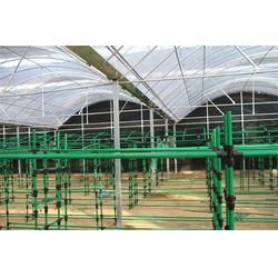 香菇架厂家|泰福钢塑管有限公司|郴州香菇架图片