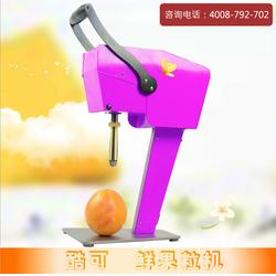 日本榨汁机迷你果汁机 电动商用水果榨汁机 饮料鲜果榨汁搅拌机图片
