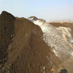 蔬菜用羊粪肥-泽河洋有机肥I厂-呼和浩特羊粪肥图片