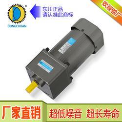 河池减速电机-减速电机公司-东川电机图片