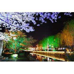 春節亮化-春節亮化-東勝天地圖片