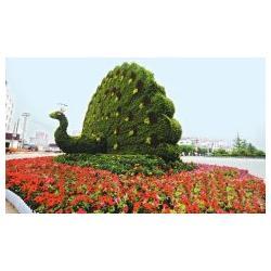 东胜天地 动物绿雕制作-动物绿雕图片