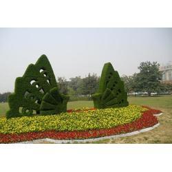 动物造型绿雕定制-动物造型绿雕-东胜天地图片