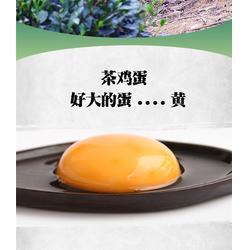 草鸡蛋-济南鸡蛋-浦江茶艺轩值得信赖图片