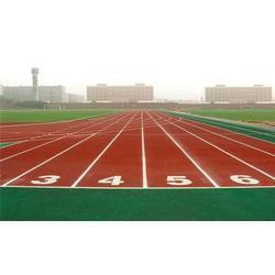 幼儿园塑胶跑道报价-南京幼儿园塑胶跑道-篮博体育图片