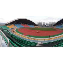 幼儿园塑胶跑道厂家-河北塑胶跑道-奥创之星体育设施(查看)图片