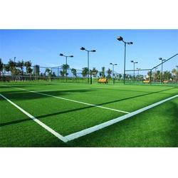 人造草坪施工,西青人造草坪,奥创之星体育设施(查看)图片