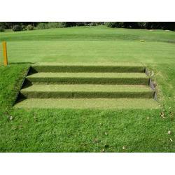 人造草坪,奥创之星,北京人造草坪图片