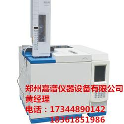 任县气相色谱仪-北分气相色谱仪-嘉谱仪器(优质商家)图片