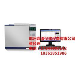 气相色谱仪报价、唐山气相色谱仪、嘉谱仪器(查看)图片