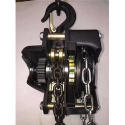 天津科美机械(图)、舞台专用电动葫芦、电动葫芦图片