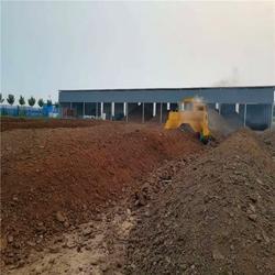 蠡县微生物有机肥|泽河洋生物肥|微生物有机肥质优价廉图片