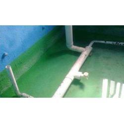 防水、js防水涂料那个好、兰室辅料(多图)图片