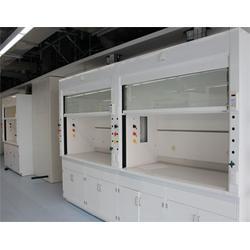 步入式通風柜-蘇州賽勒斯實驗室-杭州通風柜圖片