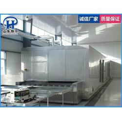贵州蔬菜低温速冻机|山东恒尔|蔬菜低温速冻机哪家好图片