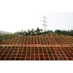 郑州锚杆框架梁,保定宇航方锐,锚杆框架梁安装图片