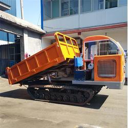 28马力履带运输车_格林伟瑞(在线咨询)_履带运输车图片