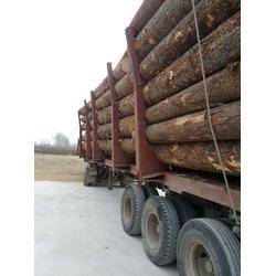 建筑口料、辐射松建筑口料出售、恒豪木材加工厂图片