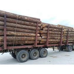 恒豪木业,建筑口料,樟子松建筑口料厂家电话图片