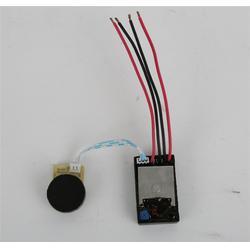 电子调速器订做|创行科技优质货源|电子调速器图片